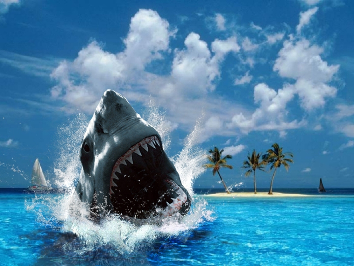 I am a fake shark who will eat your fake words, you fakey faker.