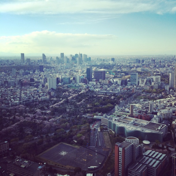 This is a picture of Tokyo. I wish I would've nabbed a #selfie with Adam Gopnik's parents.